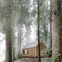Woodland Minimalist Cabin by Adolf Bereuter