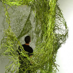 Etapes – Ronan and Erwan Bouroullec - Grand-Hornu Images