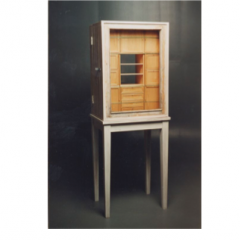 Collector's Cabinet by Piet Hein Eek