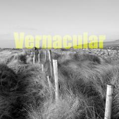 'Vernacular' - an exhibition of contemporary design and craft from Ireland
