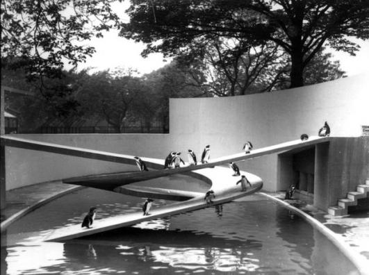 Penguin Pool, London Zoo Photograph by Frederick William Bond, 1934, UK. © ZSL
