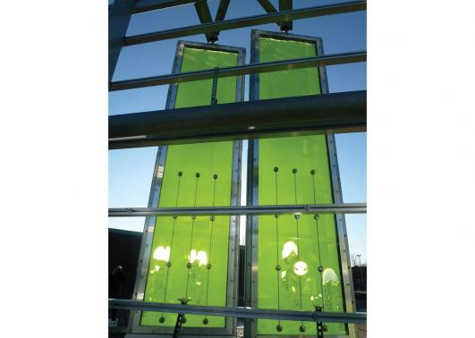 SolarLeaf algae façade panels at BIQ House Hamburg © ColtArupSCC