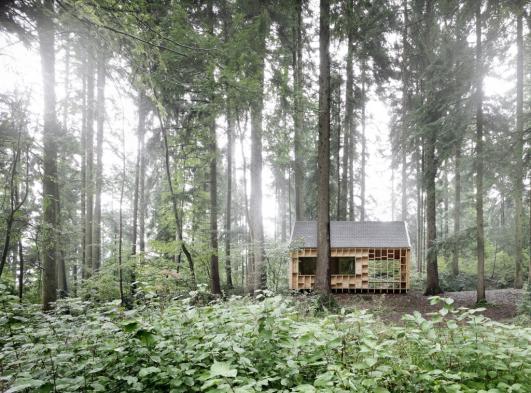 Minimalist Cabin woodland minimalist cabinadolf bereuter | detnk