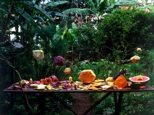 Fruit Polyhedron, film 35mm, couleur, sans son, 2'42'', 2009. Produit par Inhotim Cultural Center, Minas Gerais, Brésil © João Maria Gusmão & Pedro Paiva,
