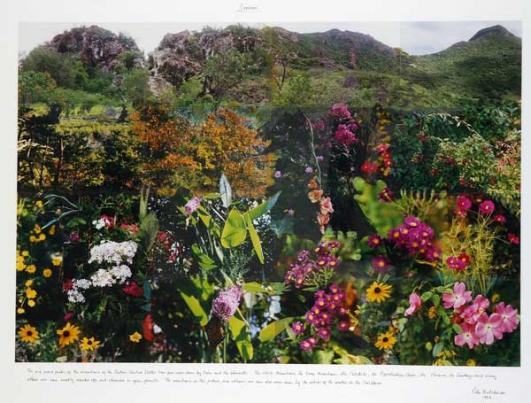 Erosion, Collage photographique sur tableau, stylo, crayon, peinture à l'huile, texte, 108 x 144 cm, (encadrée : 128 x 154 x 5 cm), 1996 © Peter Hutchinson