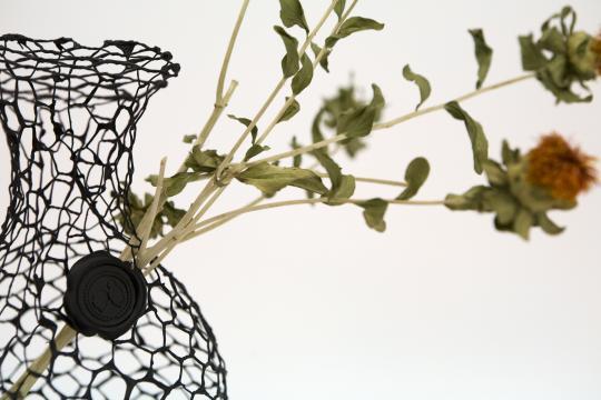 Destilled Nature by BCXSY